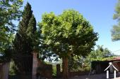 Beautiful mansion of a former winery in Languedoc Ref # 11-2215 image 1