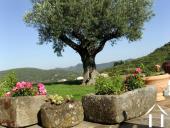 Un air de Provence dans le Languedoc ! Ref # 2368 image 5