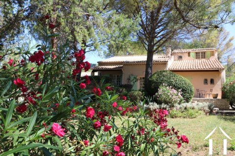 Property with outbuildings & pool in the heart of Languedoc Ref # 11-2338