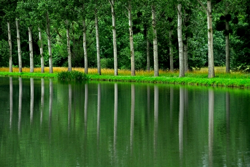 <en>Burgundy regio of rivers and canals</en><nl>Bourgogne Regio Frankrijk</nl>