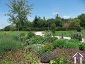 lovely landscaped garden