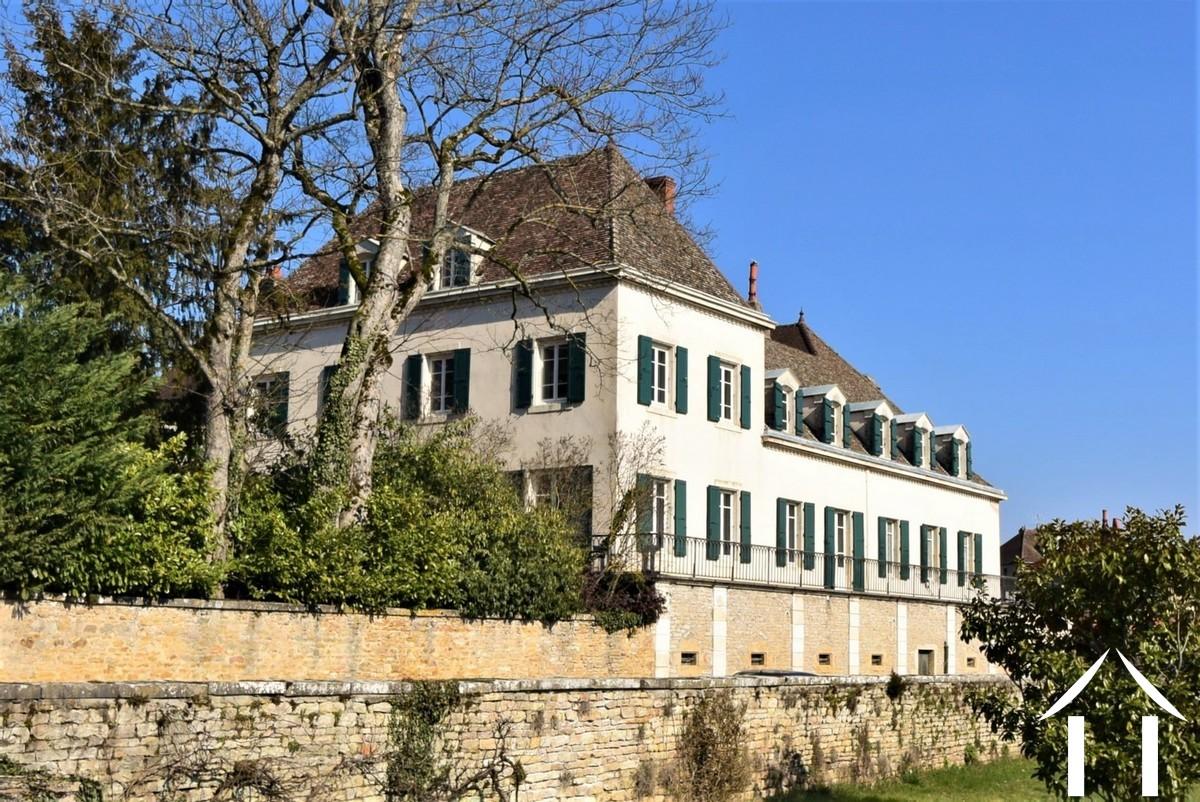 Grand house, cellars, 3 acre garden in active wine village