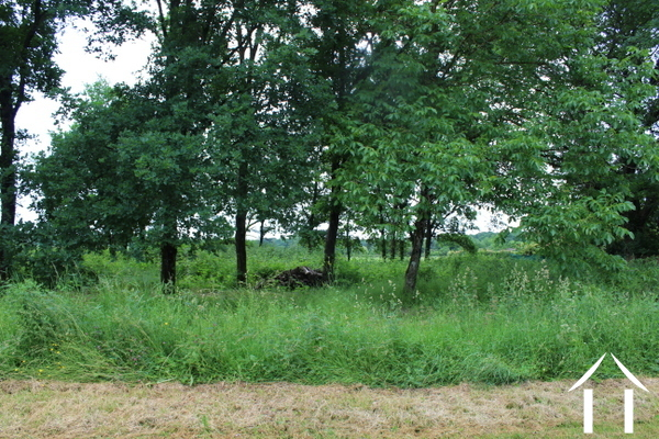 1101 m2 building plot with view and mature trees.