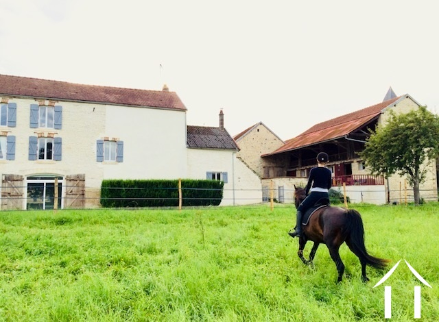 Nice village house with stables and 10.000m2 of land
