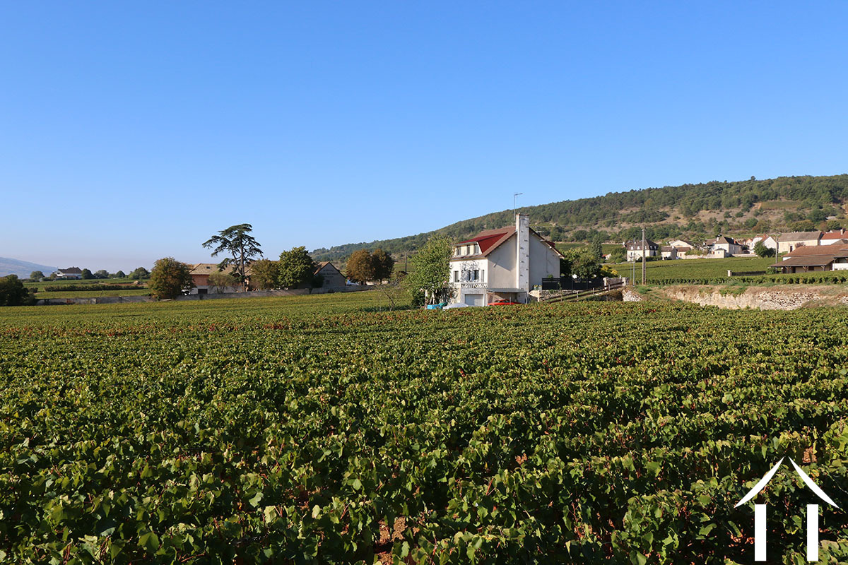 Renovated house in the middle of the vineyards