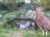 House near neo-feudal castle, renovation project Ref # CR4914BS image 5 Pond in garden