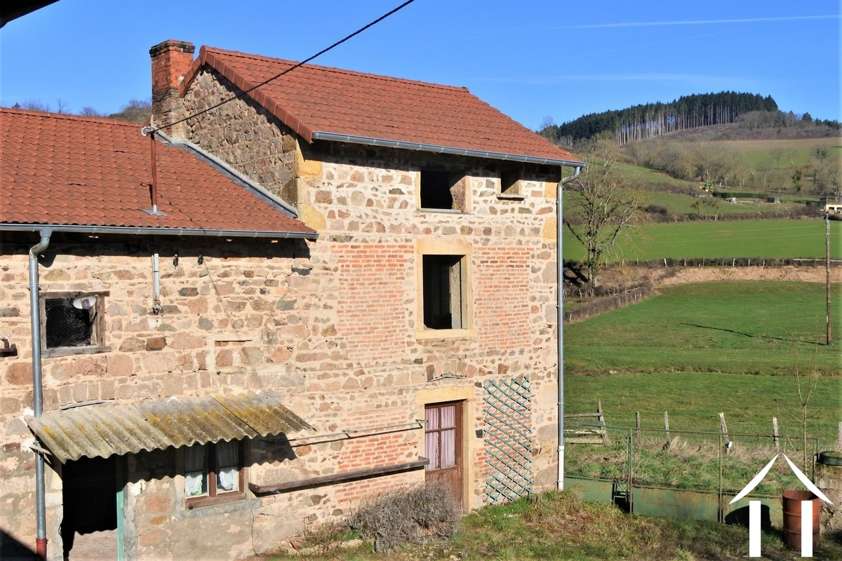 Farmhouse and apartment to renovate with outbuildings