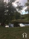 Potential Property 14 ha.pond,pool,spring,tennis, m.golf.  Ref # GVS4893C image 31