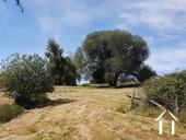 Potential Property 14 ha.pond,pool,spring,tennis, m.golf.  Ref # GVS4893C image 8