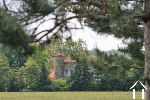 Charming 16/18 century Chateau 600m2 with beautiful grounds 4 ha, swimming pool and outbuildings. Ref # MP7101