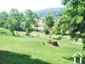 Stone farmhuse with Auberge 100m2, outbuildings and land,stunning views across the countryside to the Pyrenees. Potential for Chambres d'hotes or gite. Ref # MP9046 image 7
