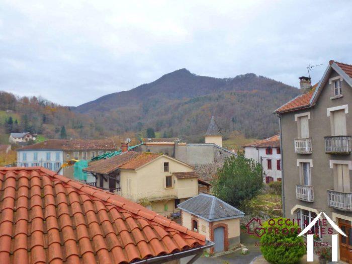 Large village huse