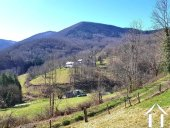 Beautiful stone house 180m2 on 8000m2 of land Ref # MPDK045 image 29